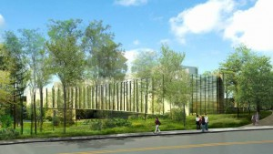 This illustration shows a planned building at Vassar, which will be built into a wooded area, and will use special Ornilux Mikado glass that reflects UV light visible to birds.