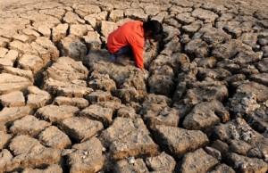 09112015-climate-change-300x194